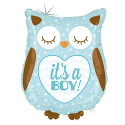 35158H-It-s-A-Boy-Baby-Owl