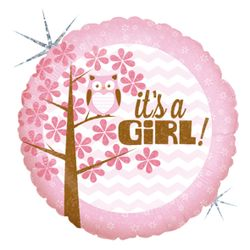 36156H-It-s-A-Girl-Baby-Owl