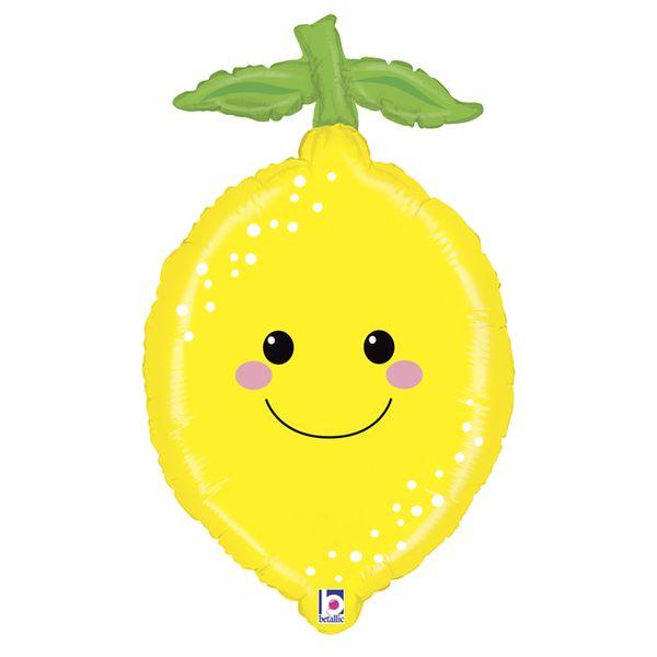 35629-Produce-Pal-Lemon