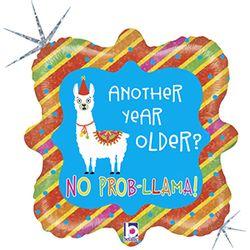36806H-SF18-Llama-Birthday